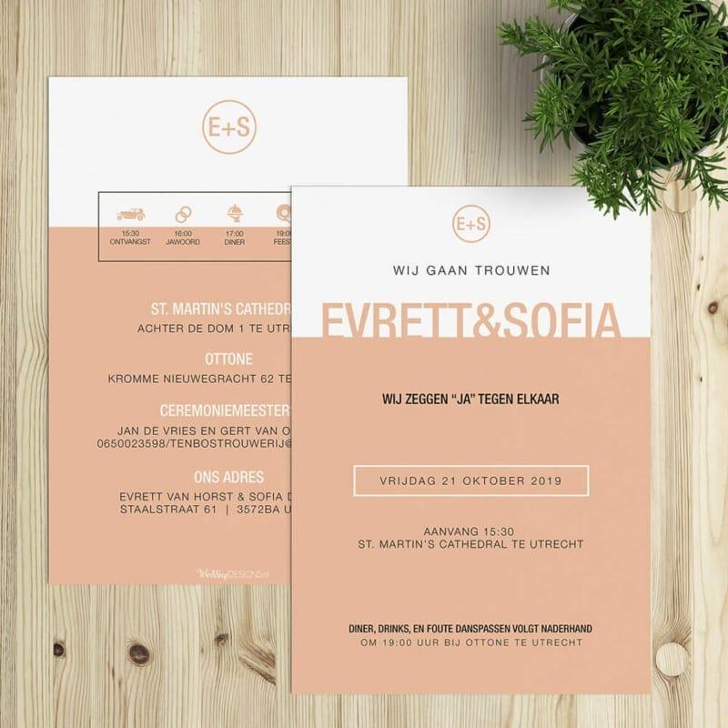 Tekst trouwkaart daggasten met timeline, programma met icoontjes